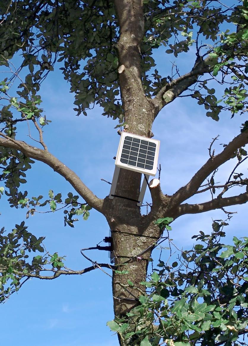 Waspmote Plug & Sense! Smart Environment sensor node
