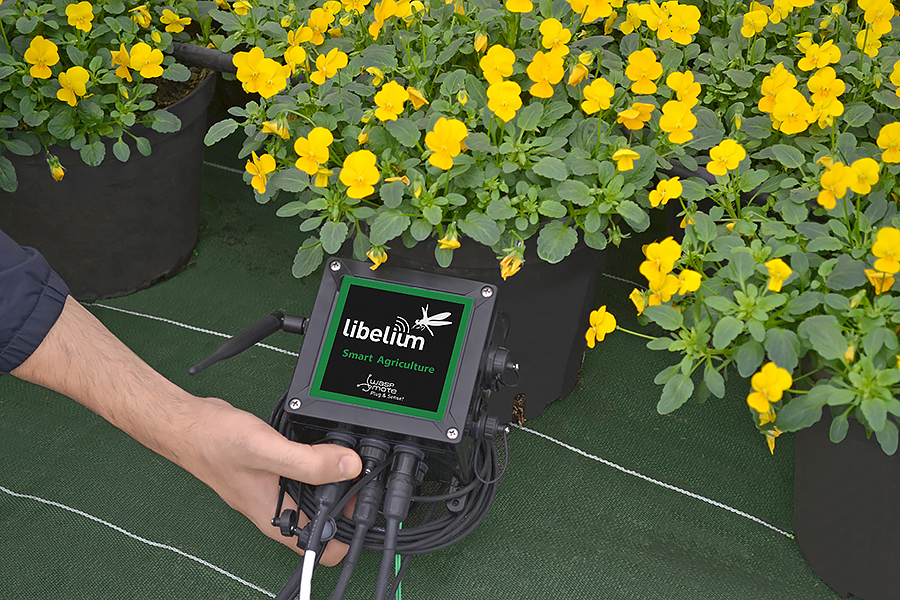 Smart Agriculture Node setup