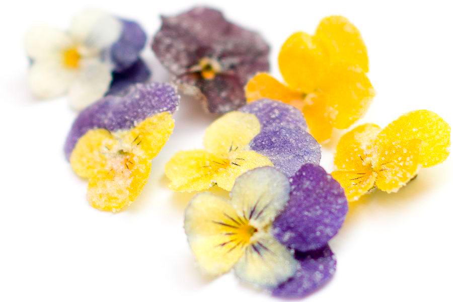 Flores en la mesa crystallized flowers