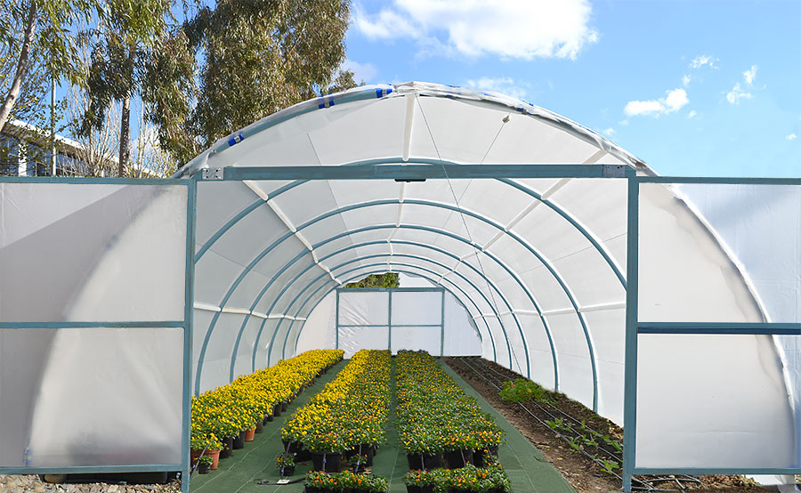 Greenhouse with flower pots