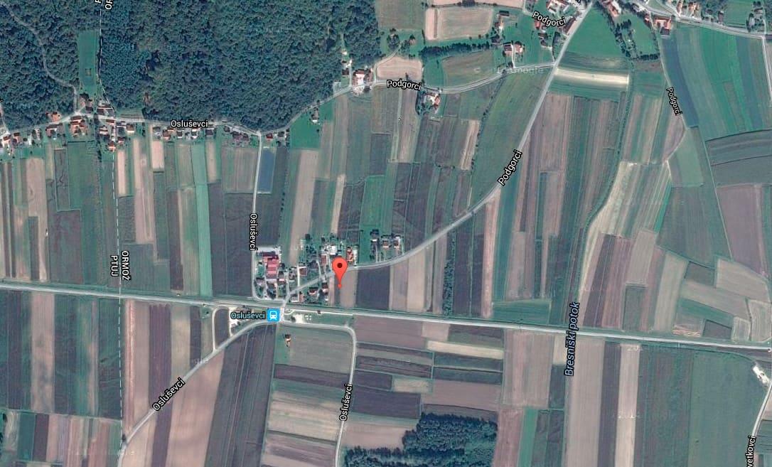 Vineyard in Podgorci