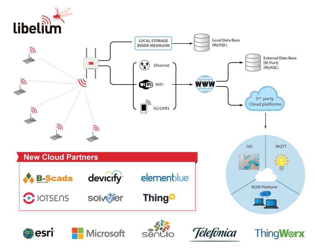 Cloud Partner Ecosystem