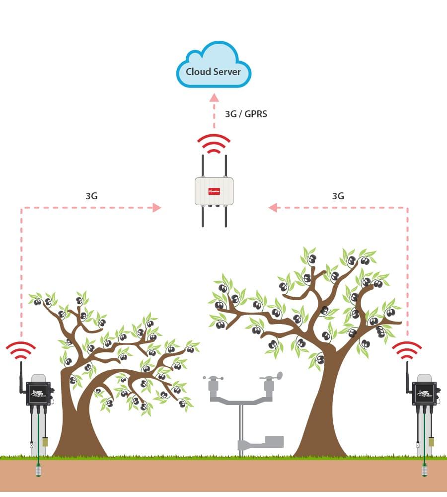 Weather monitoring schema