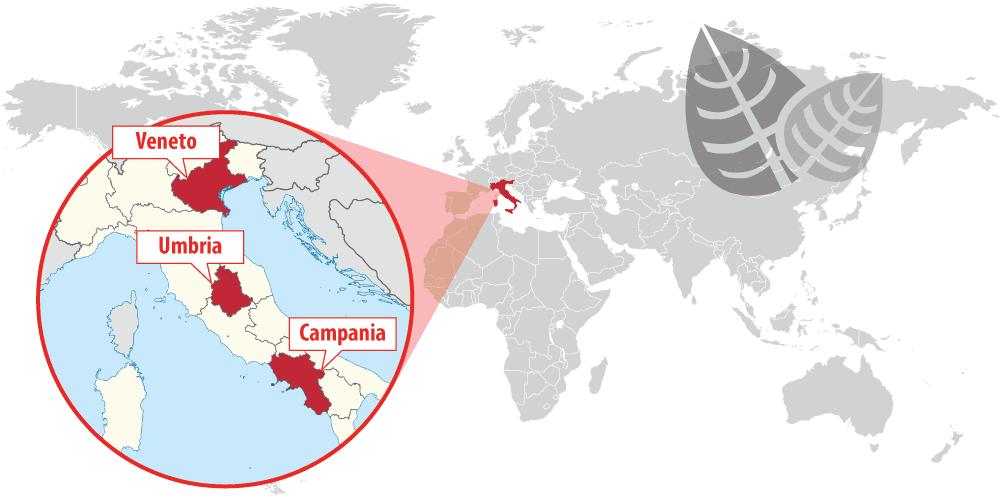 Veneto, Umbria and Campania, Italy