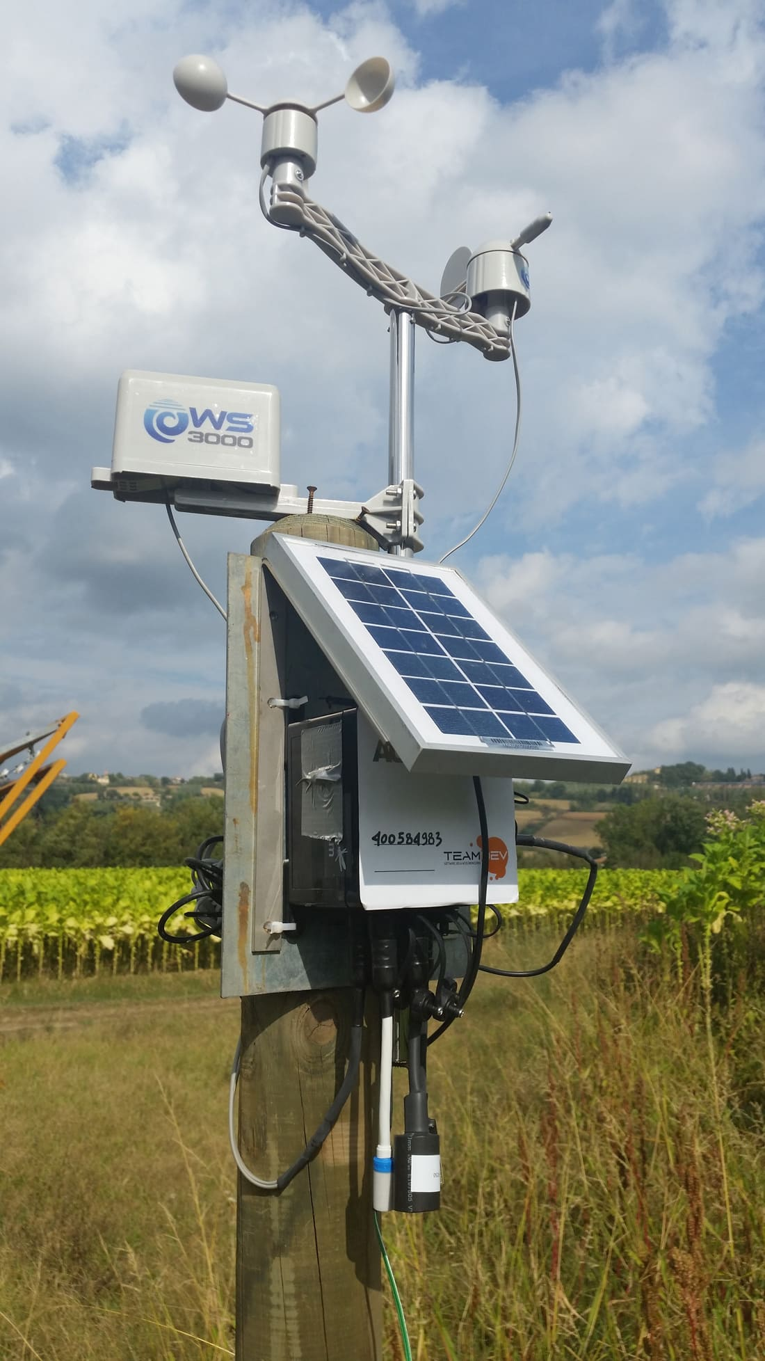One of the sensor nodes installed in tobacco's crops