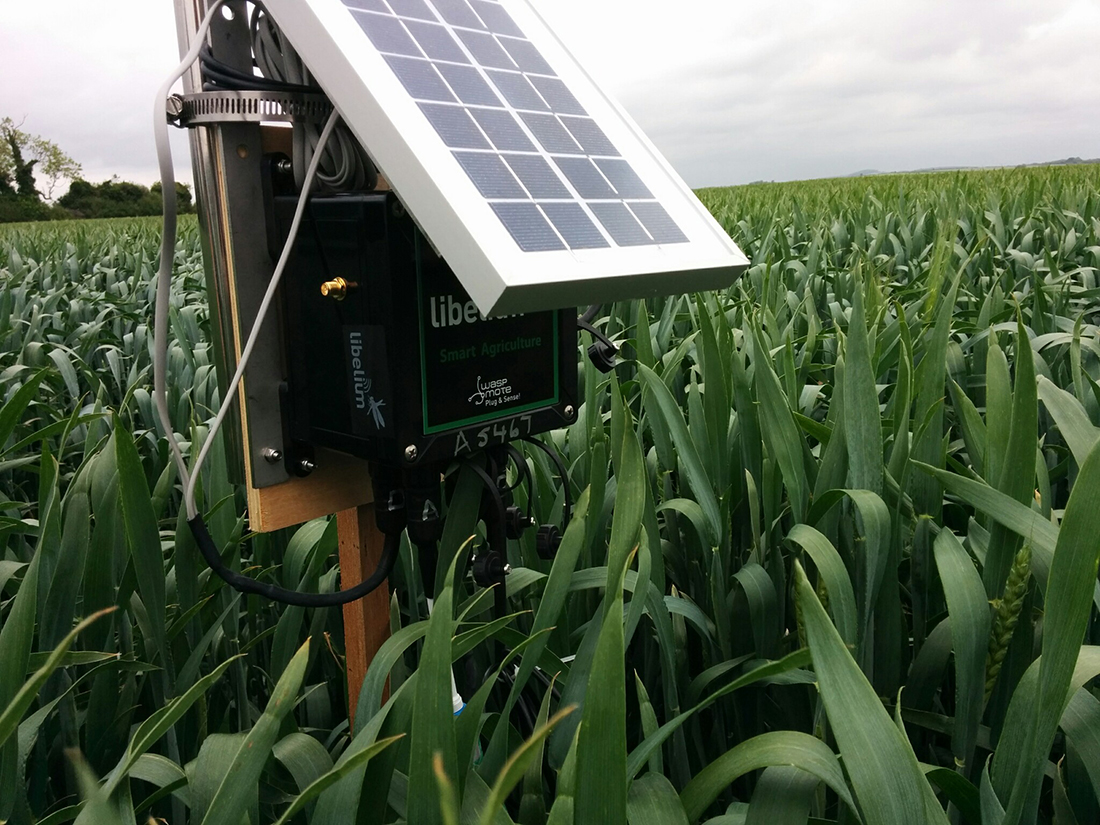 Smart Agriculture Project For Organic Farms In Uk Libelium