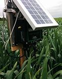 Plug & Sense! Smart Agriculture