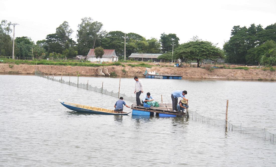 Waspmote Plug & Sense! intallation in a fish farm pond