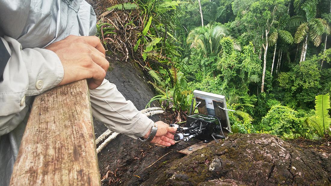 Waspmote Plug & Sense installed in Parque Nacional del Manu (Peru)