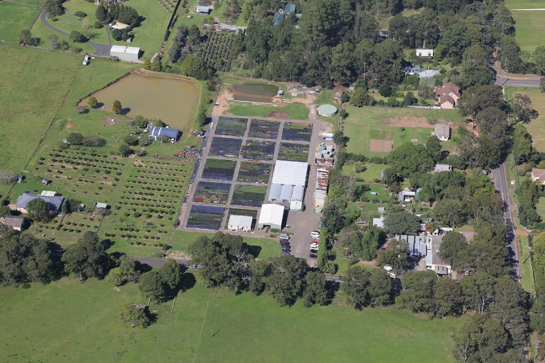 Aerial view or Cameron's Nursery