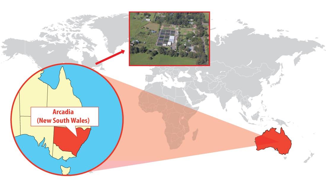 Cameron's Nursery location in Arcadia (Australia)