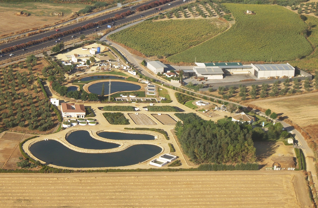 CENTA Foundation Facilities
