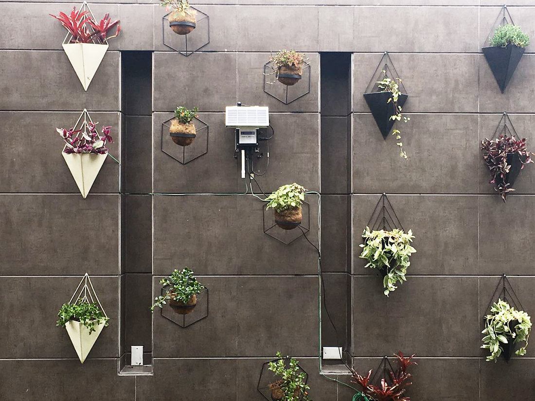 Vertical Smart Garden at Microsoft offices