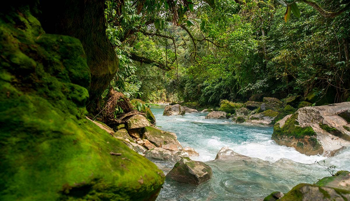 Early warning system to prevent floods and allow disaster management in Colombian rivers