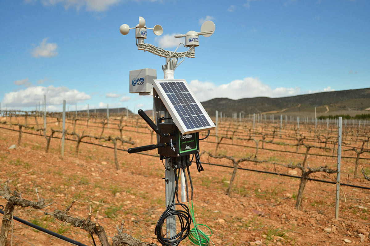 Waspmote Plug & Sense! Smart Agriculture at Pago Aylés Winery