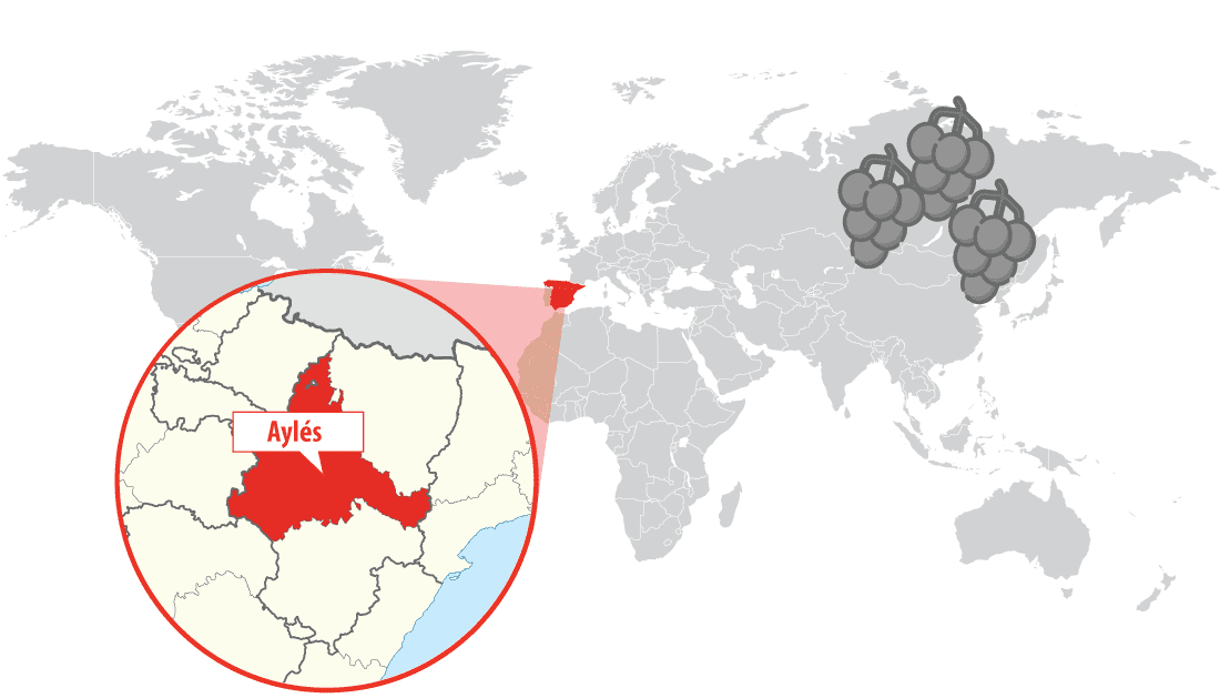 Location of Pago Aylés winery