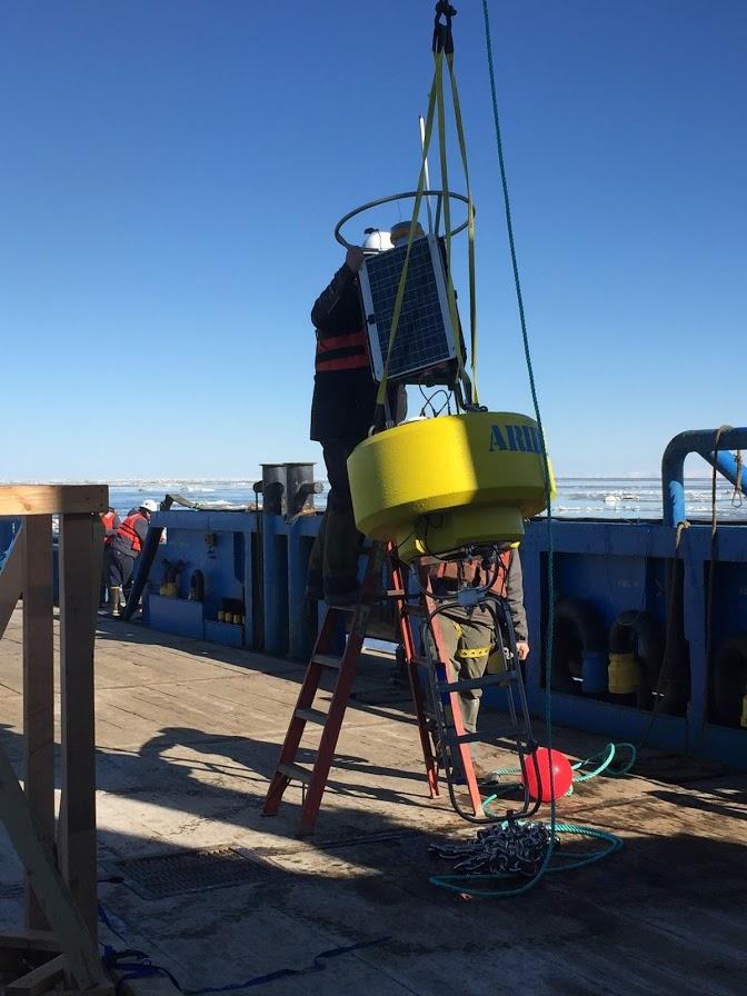 Installation of the buoy at Cook Inlet (Alaska)