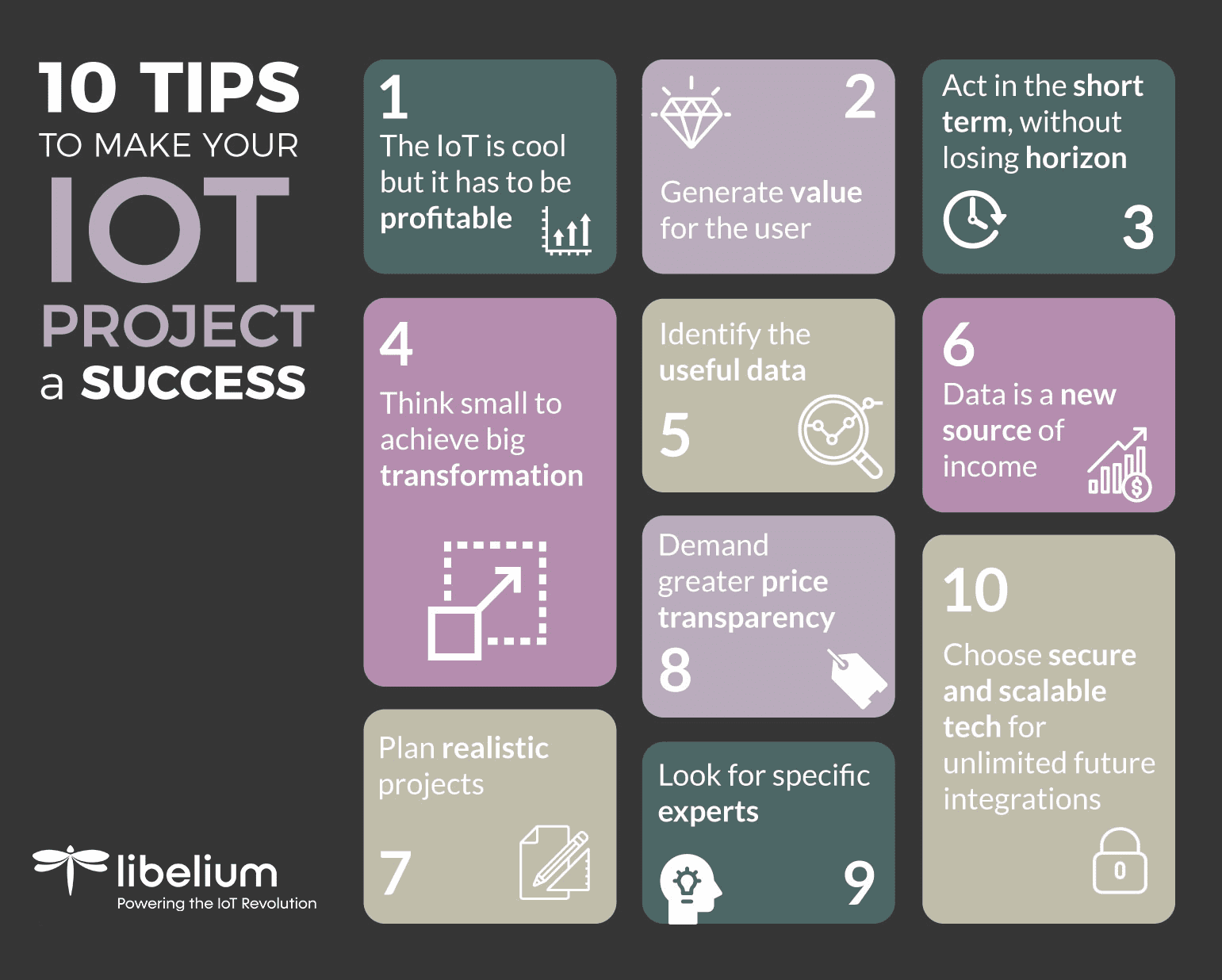 Infography Decalogue IoT Libelium