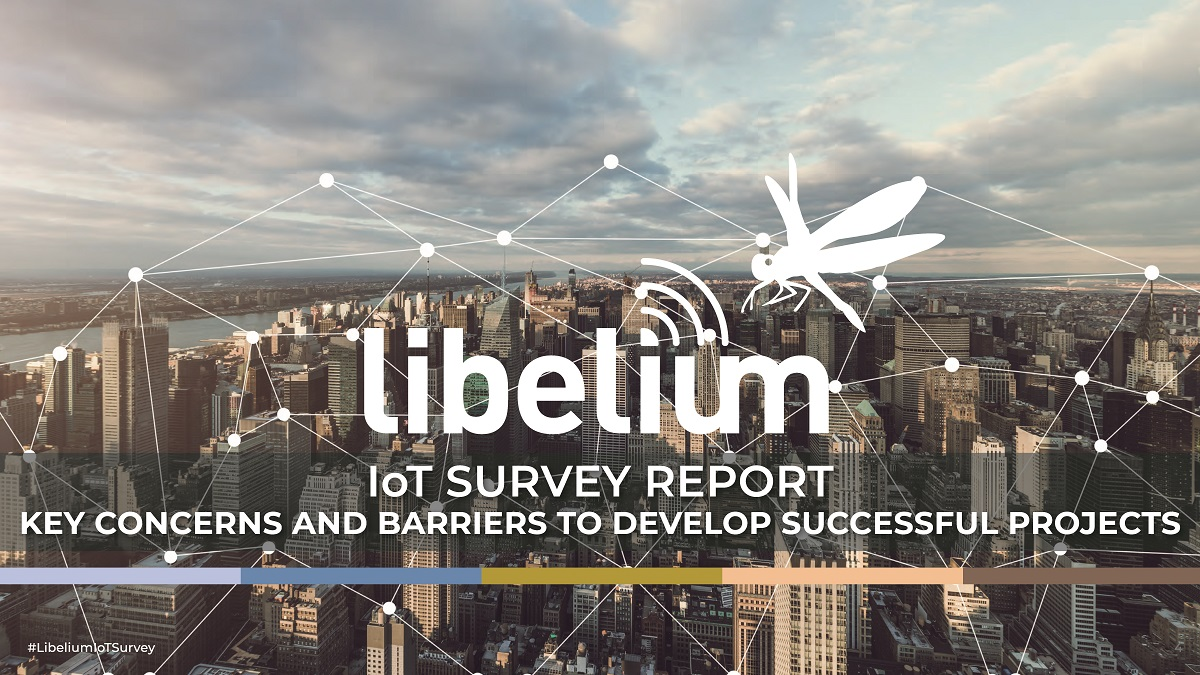 Libeliu IoT Survey report