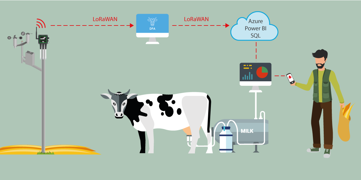 How a dairy farm increased their milk production 18% with IoT and ...