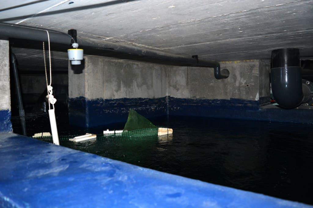 Rardar level sensor installed in the aquarium tank