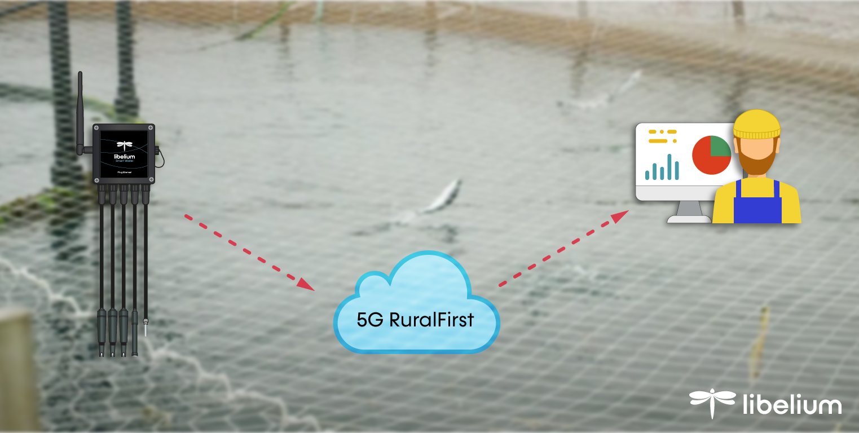 Diagram IoT project salmon sea farm