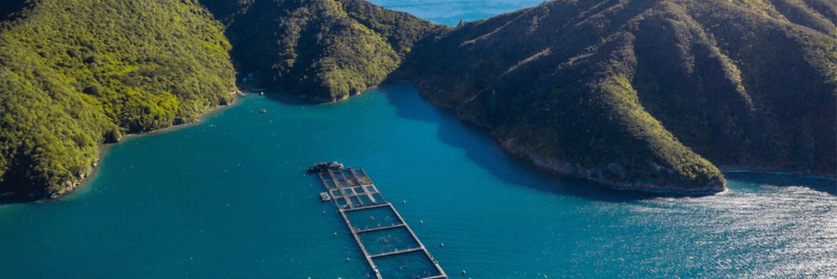 Smart Water New Zealand