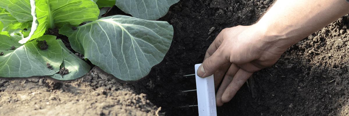 Teros12 soil moisture sensor